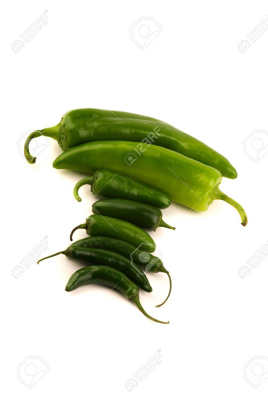 Assorted Peppers - New Mexico Green Chile, Jalapeno, and Serrano Isolated on White Stock Photo - 2986556