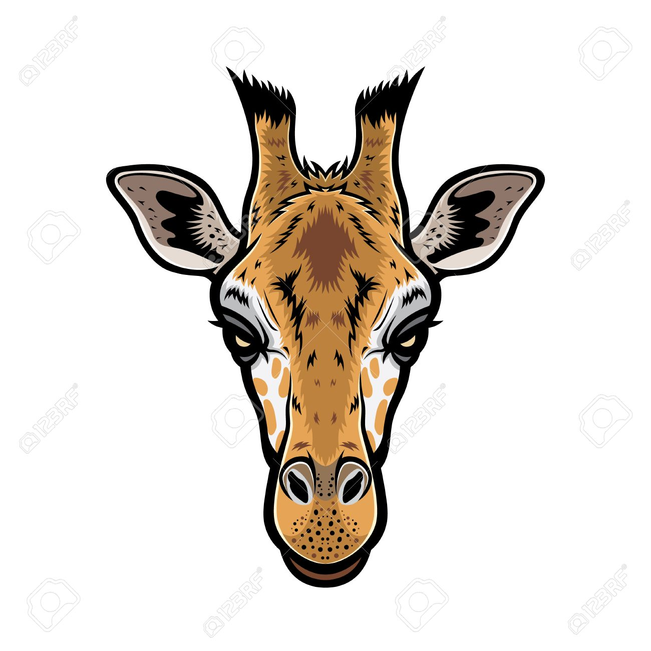 giraffe head vector graphic illustration with color royalty free