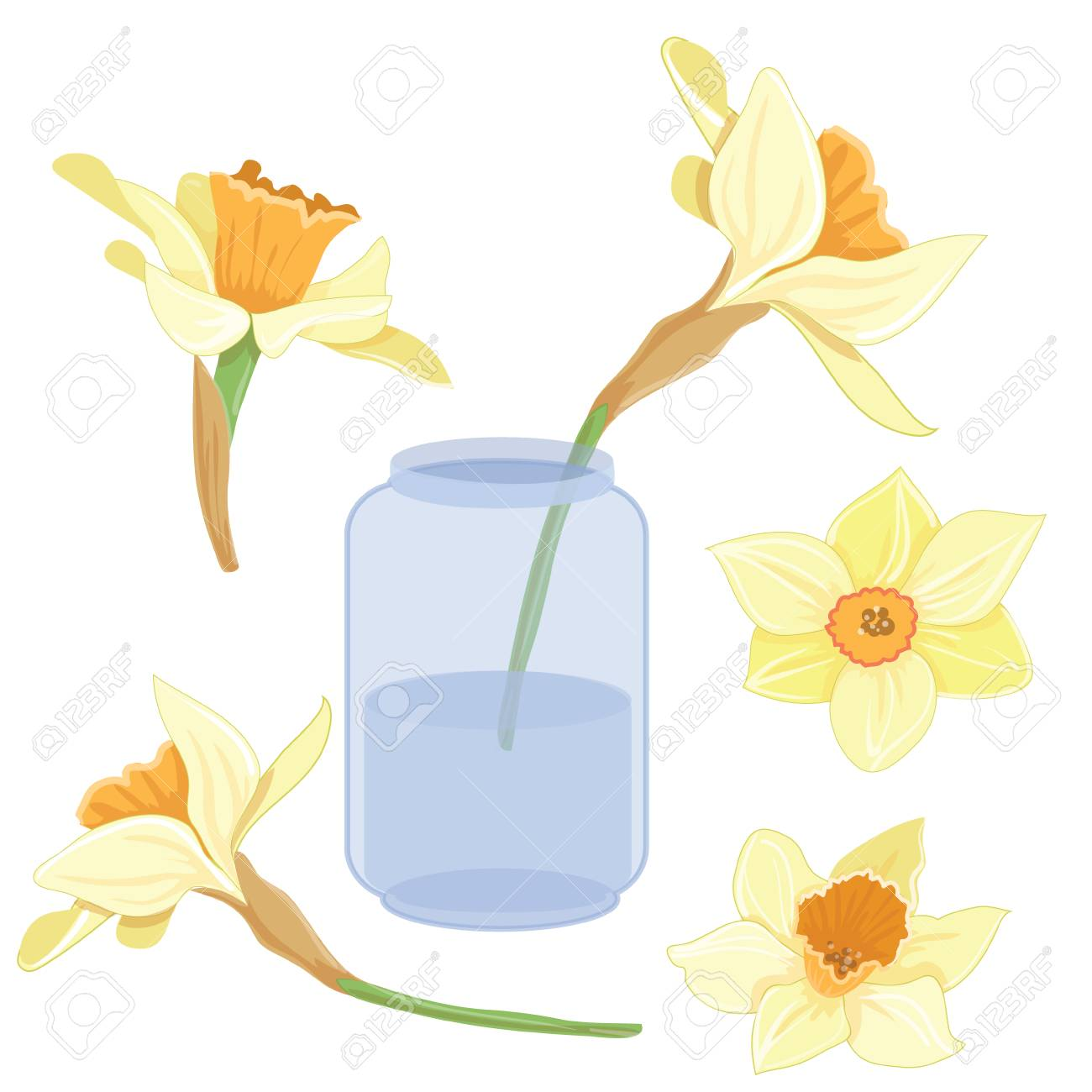 bouquet narcissus on a vase isolated vector clipart illustration rh 123rf com spring vector background spring vector images