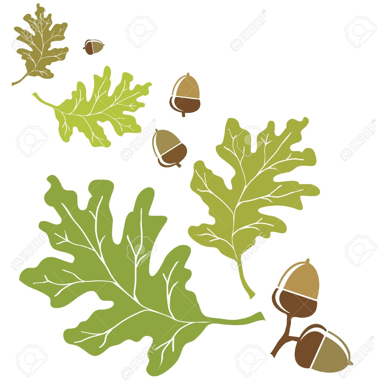 36 599 oak leaf cliparts stock vector and royalty free oak leaf