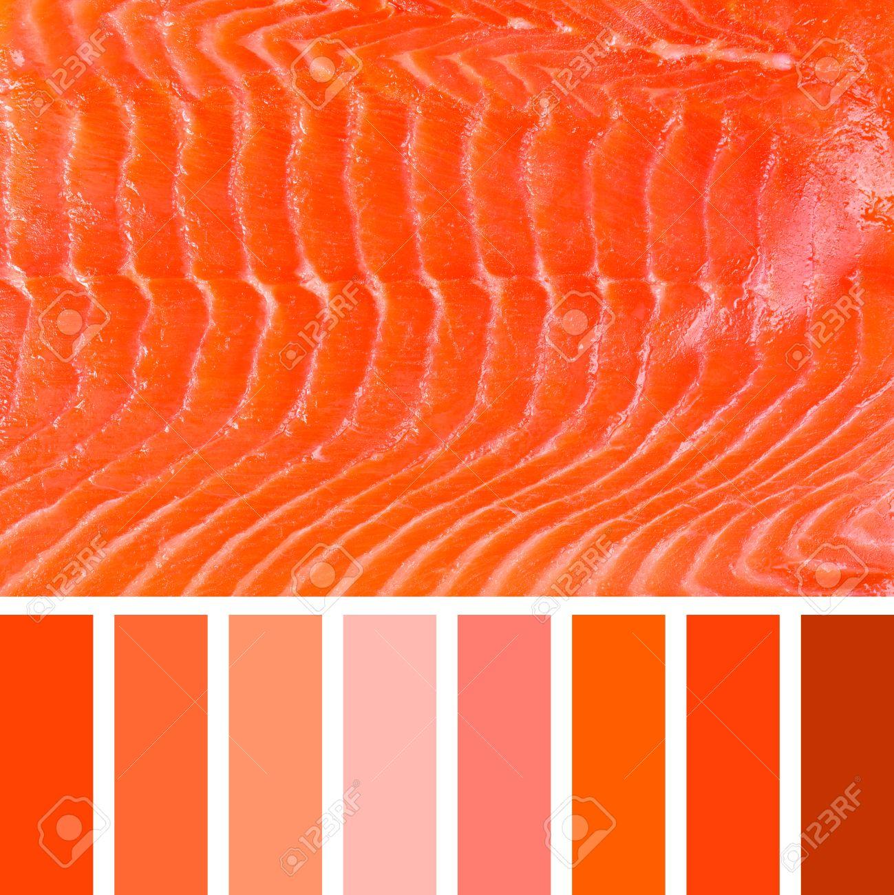 100 Génial Idées Palette De Couleur Saumon
