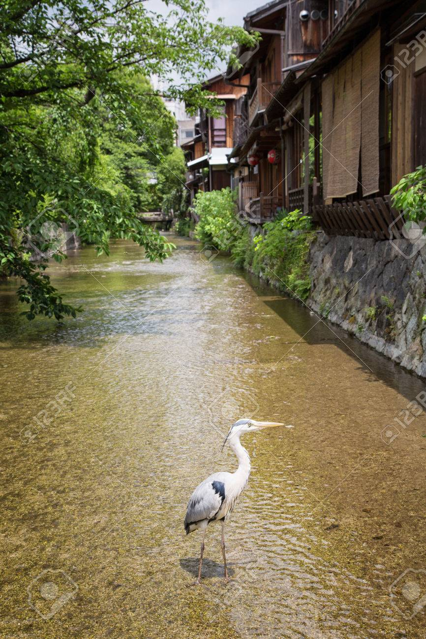 Traditional Old Houses In Gion Osaka A Crane The Japanese Stock