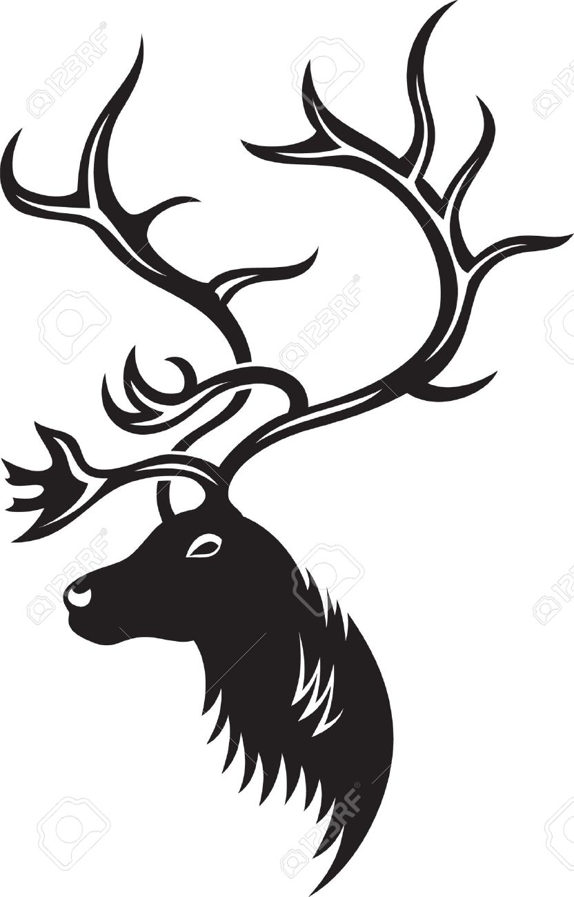 Head of deer with big antler, black and white style Stock Vector - 16827732