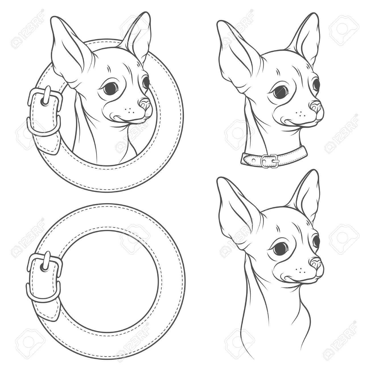 Un Conjunto De Dibujo Vectorial De La Chihuahua En El Cuello ...