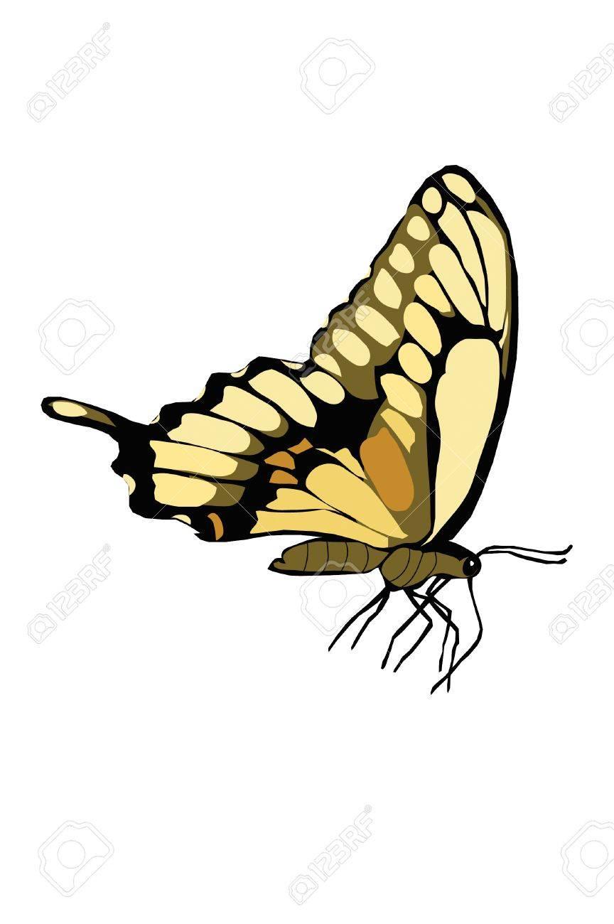 Aile De Papillon Dessin fermé ailes de papillon jaune dessin. clip art libres de droits