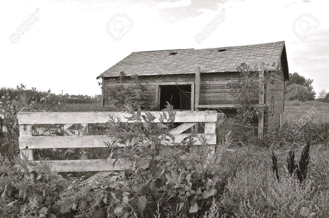Ein Alter Holzschuppen Oder Scheune Ist Von Einem Zaun Und Tor