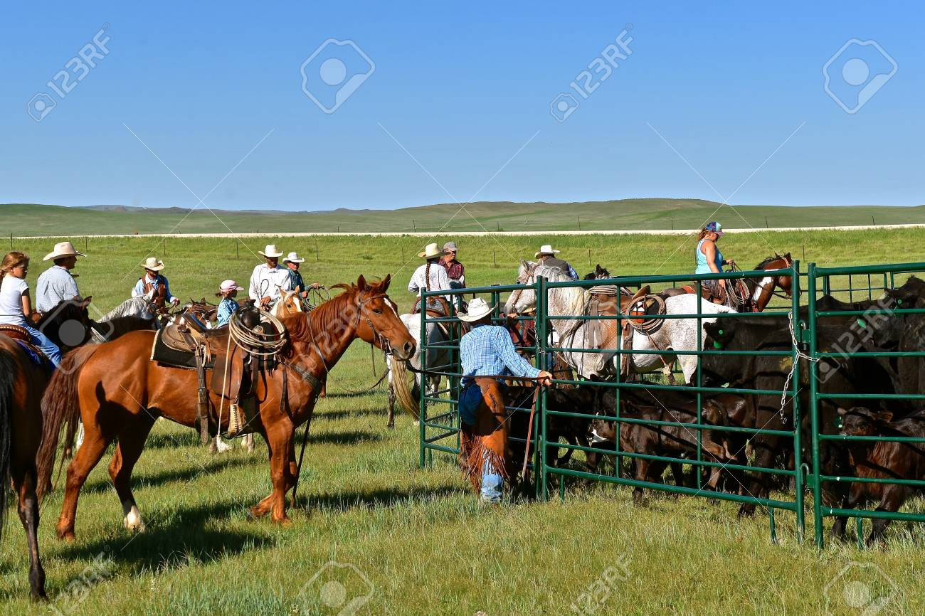 MUD BUTTE, SOUTH DAKOTA, May 23, 2018: The annual roundup and