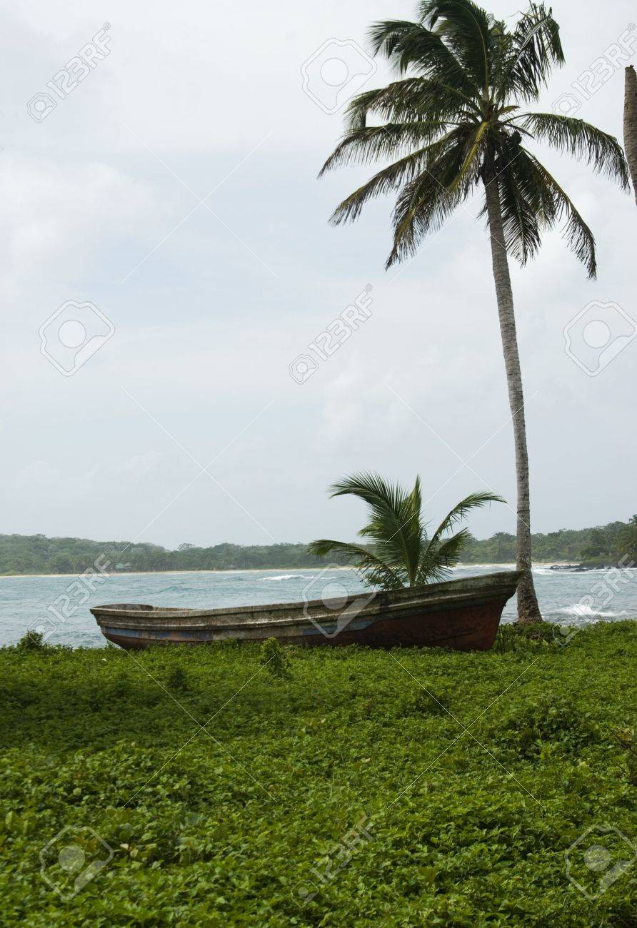 fishing boat with palm tree corn island nicaragua third-world rural setting long bay in the distance Stock Photo - 2251574