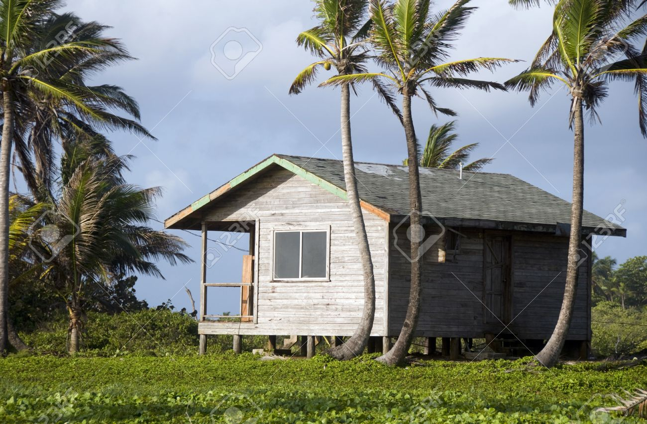 Basic Simple Beach House Cabana In Jungle Coconut Trees Big Stock