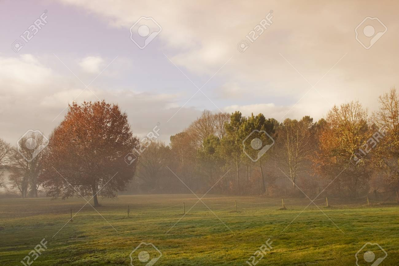 foggy landscape Stock Photo - 4264148