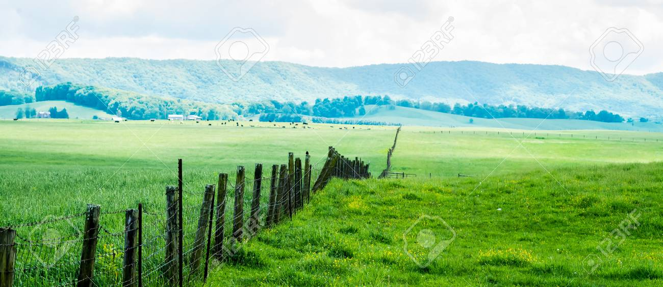 Fence Line Across Field Towards Mountains In Burkes Garden VA Stock ...