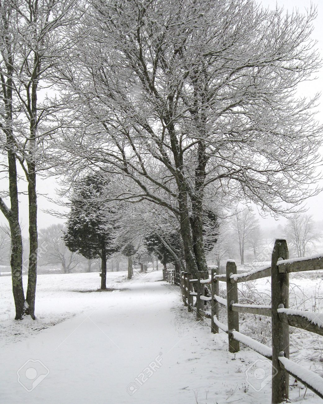 Flowery Lane in Winter, Plymouth, MA Stock Photo - 7742826