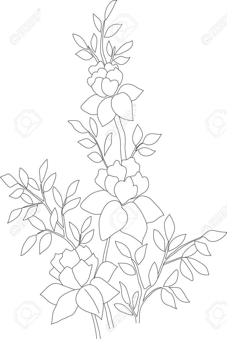 Rosas Lápiz Manuales Ilustración Arbusto De Tres Flores Y Hojas Plantilla Para Colorear