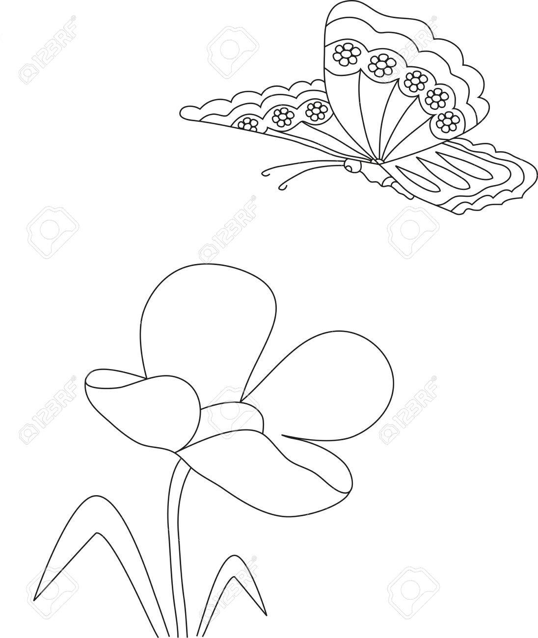 Manuel Dessin Au Crayon Dune Fleur De Tulipe Et Le Papillon Modèle