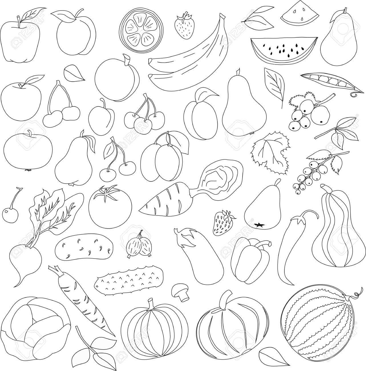 Lápiz Modelo De Las Frutas Y Hortalizas Iconos Modelo Con Las Líneas Negras Sobre Un Fondo Blanco Modelo De Libro Para Colorear