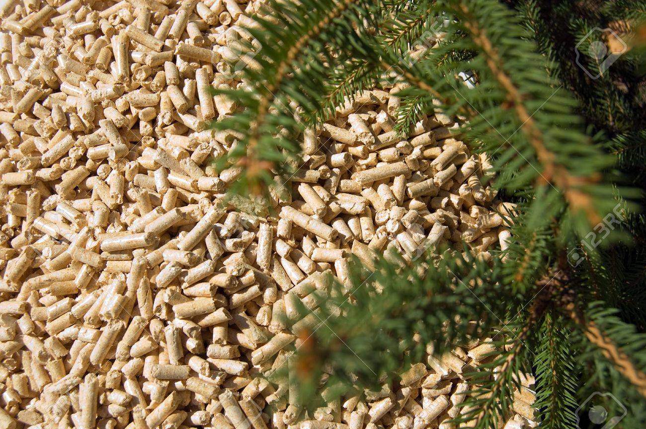 wood pellets green energy and branches of red deal Stock Photo - 3542593