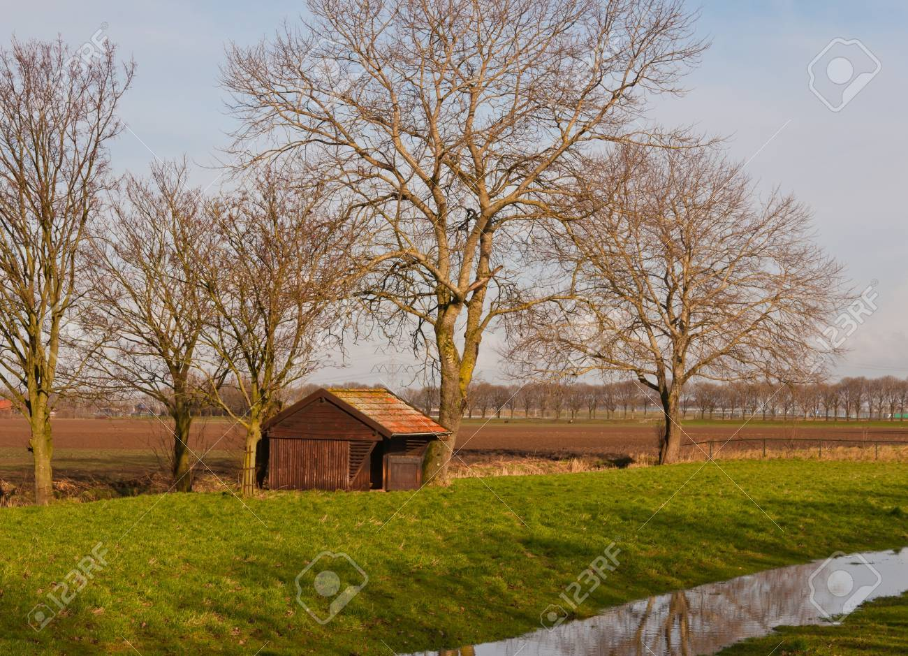 Landscape in the Netherlands with a small barn and trees reflected in the water surface of ditch. Stock Photo - 11768388