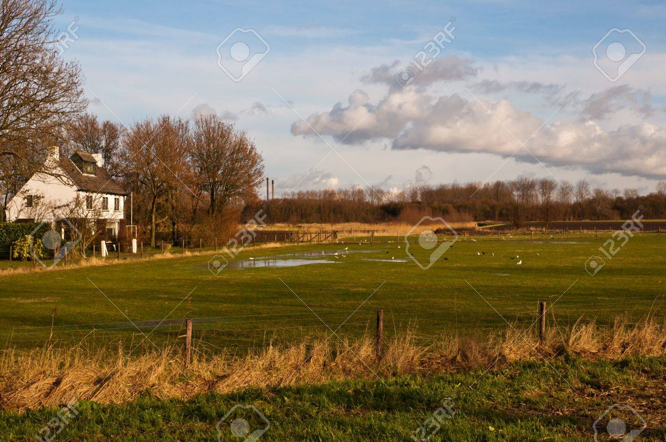 Dutch landscape in the hamlet Noordschans (municipality of Moerdijk) with a wet grassland and a white house next to it. Stock Photo - 11768424