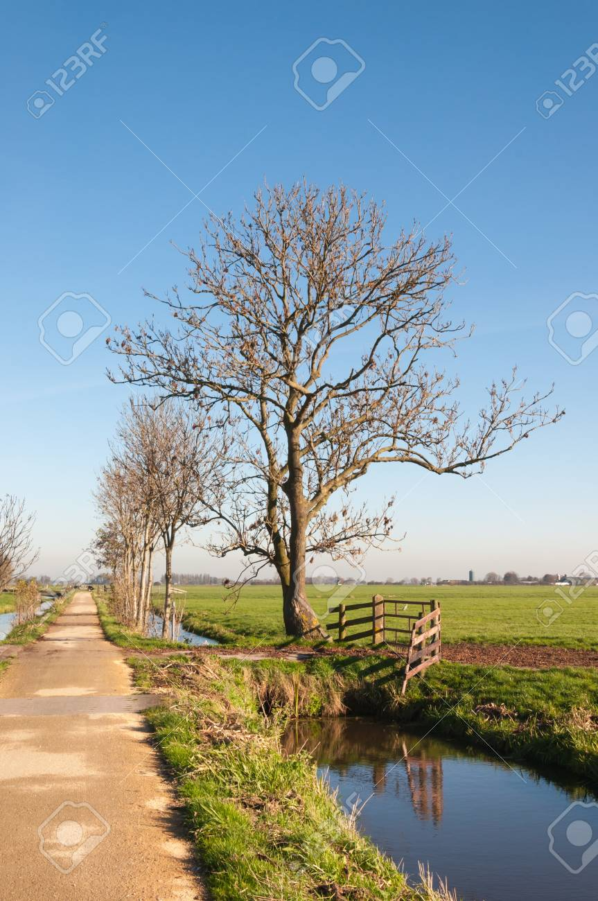 Country road, ditches and grassland in an autumnal Dutch polder landscape. Stock Photo - 16505254