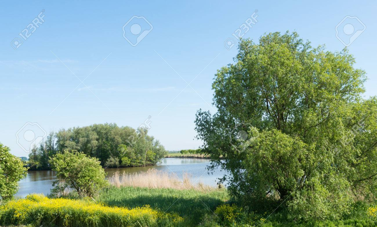 Sunny And Colorful Landscape In The Spring Season With A Small ...