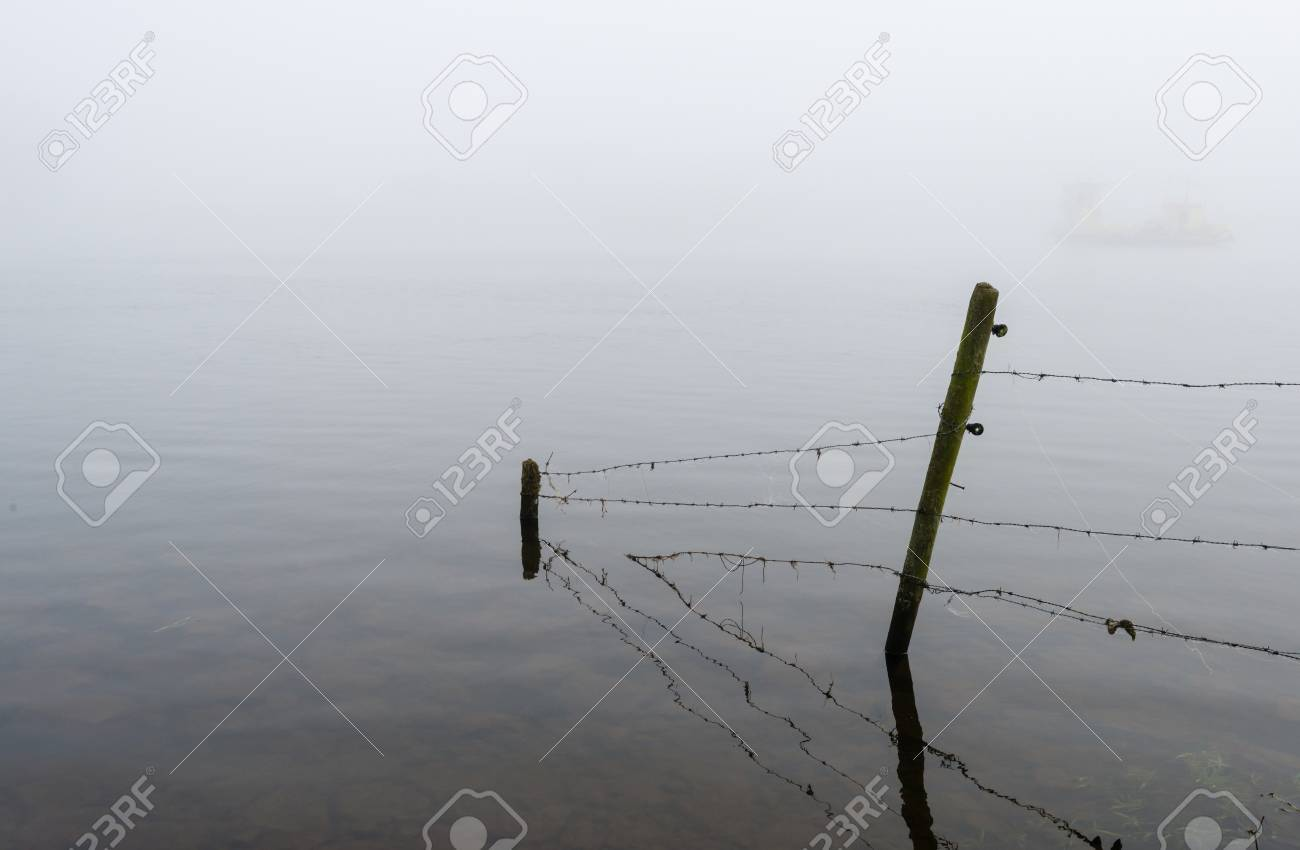 Barbed Wire Fence With Dewy Spider Web In The Flooded Land On ...