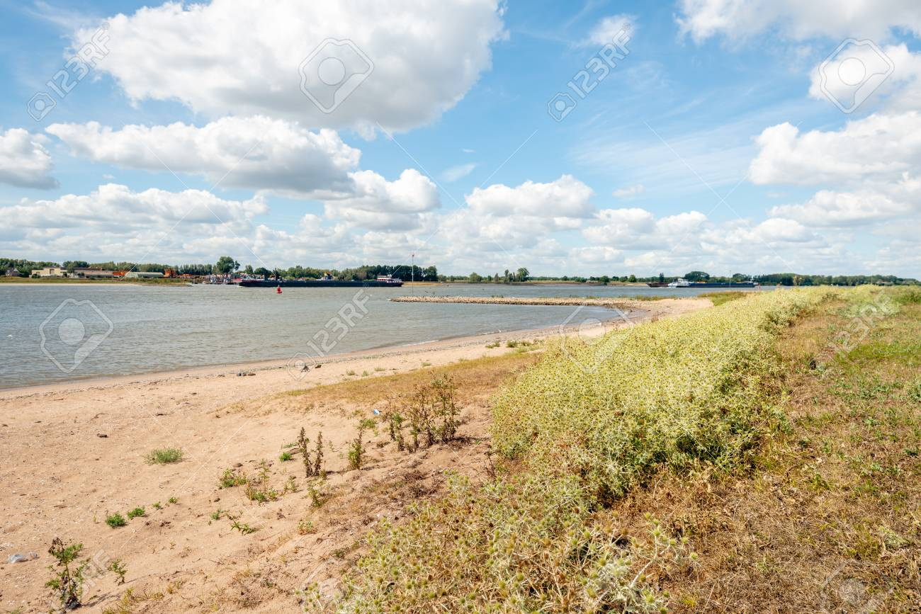 Sandy beach on the banks of the Dutch river Waal in the summer