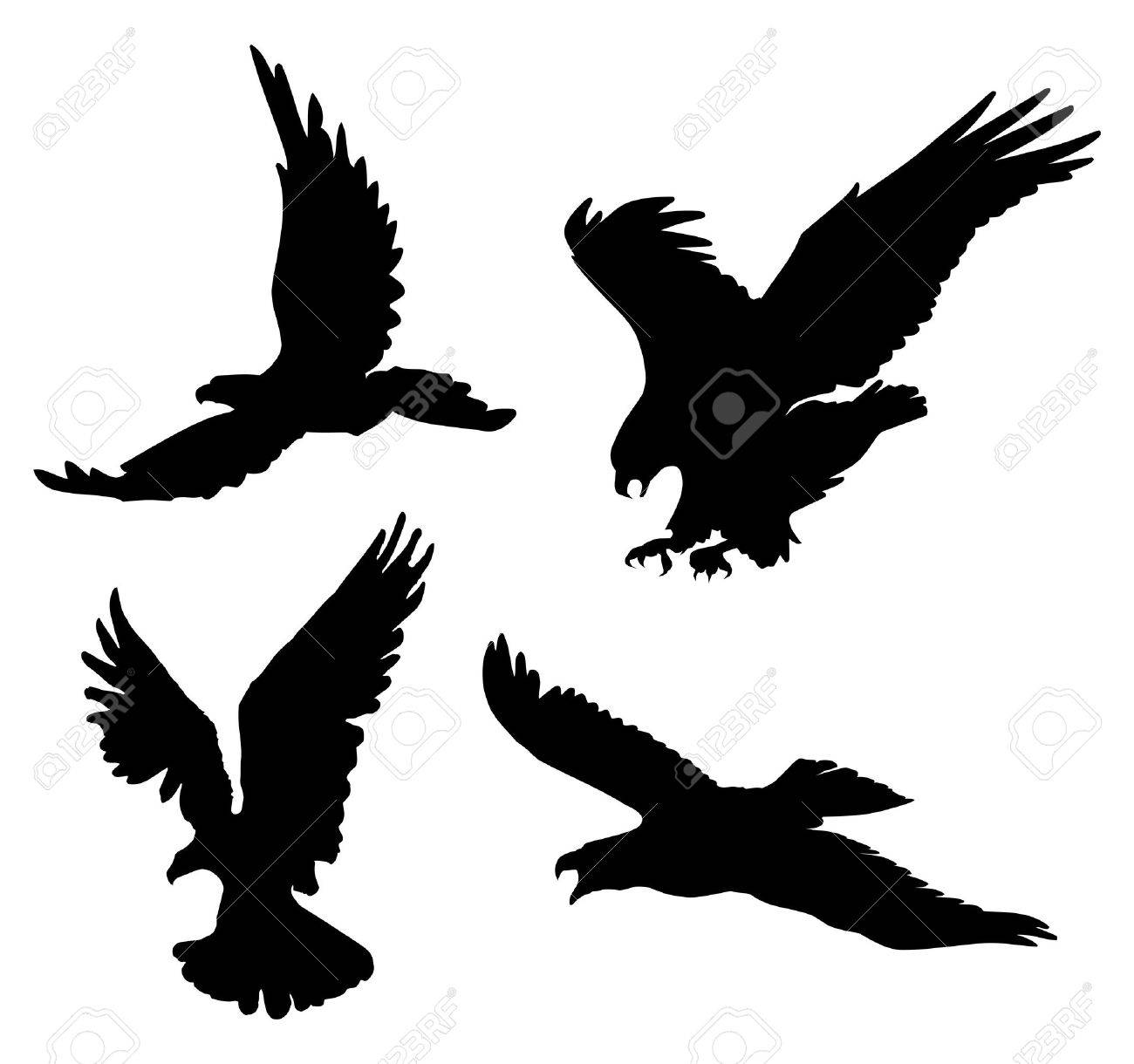 Flying eagles silhouettes on white background, illustration. Stock Vector - 8877343