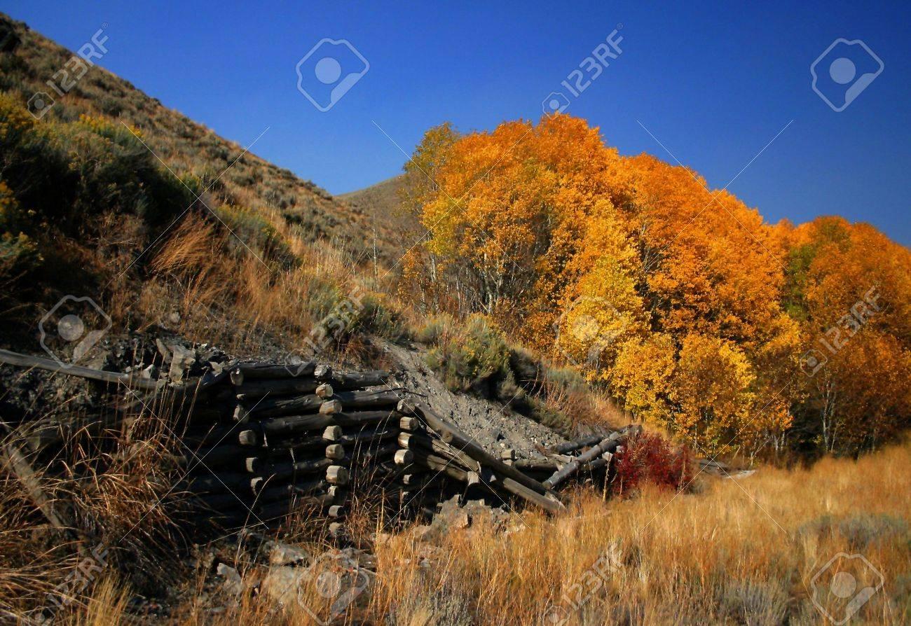 Autumn scene with aspen trees and rustic fence,Idaho Stock Photo - 936967