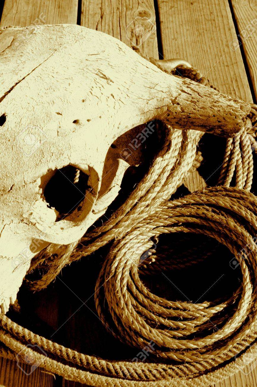 Rope And Skull In Sepia Tone Stock Photo - 1209241