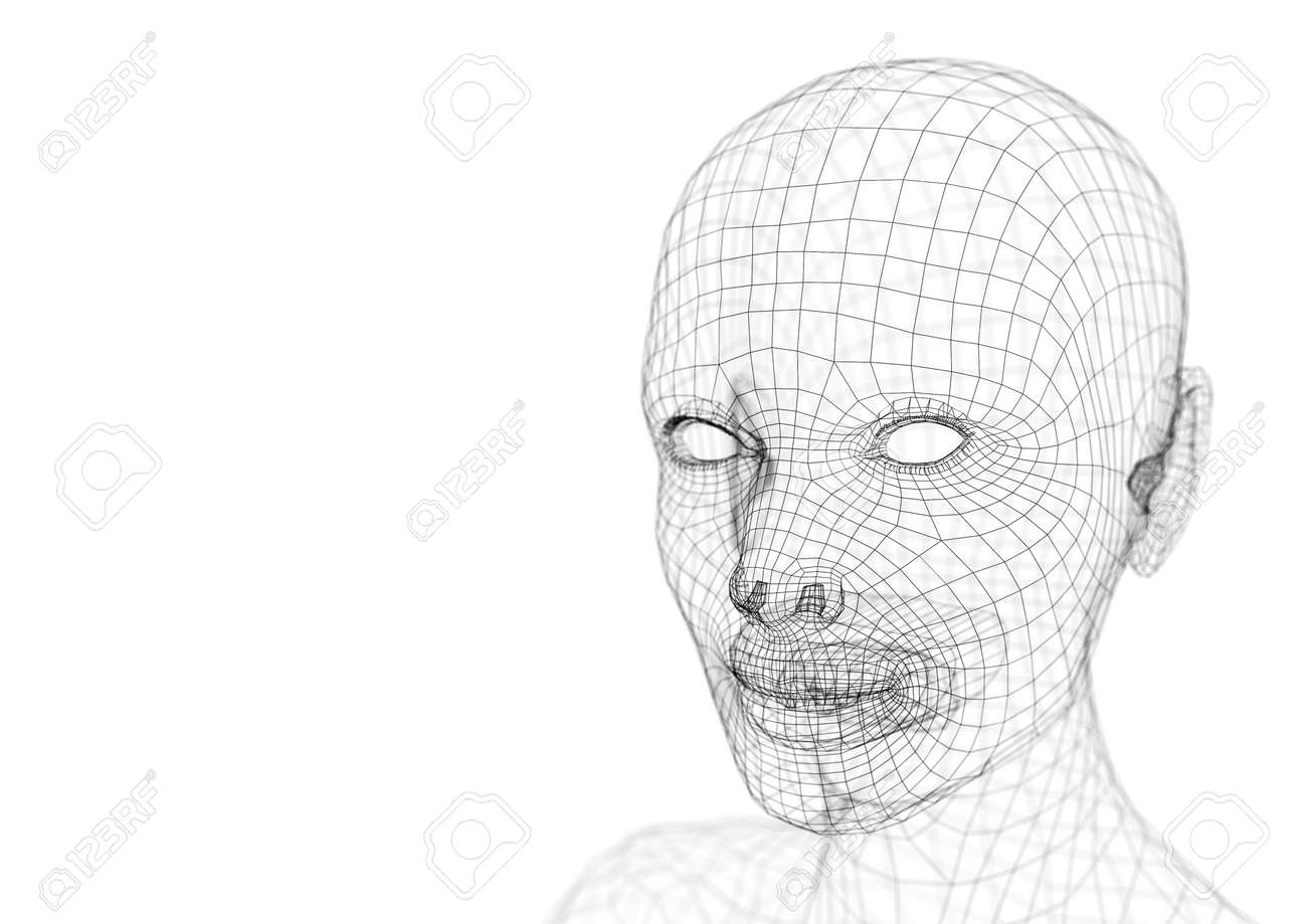 Wireframe Young Woman Head 3d Illustration Stock Photo, Picture And ...