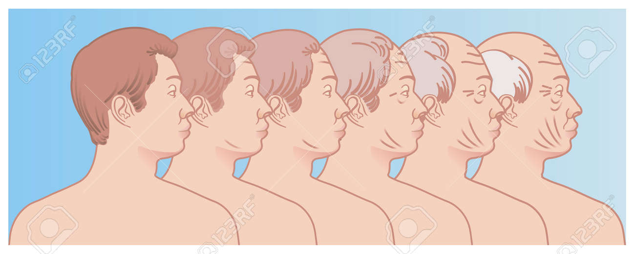 Simple illustration shows the progressive aging of the face of a man. - 165325325