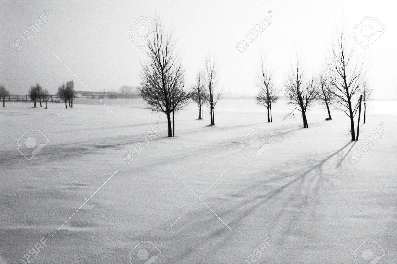 snowlandscape in holland Stock Photo - 11407843