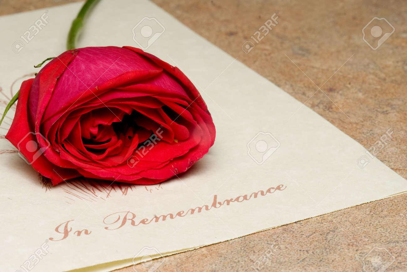 Ein Begräbnis Bulletin Mit Einer Einzigen Roten Rose. Lizenzfreie ...