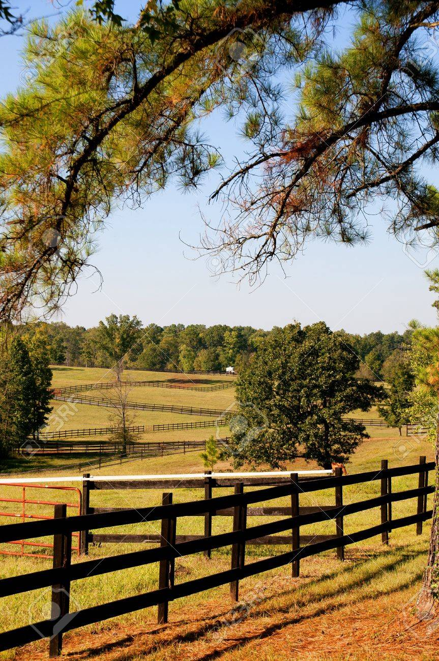 The fence on a large horse pasture Stock Photo - 8046583