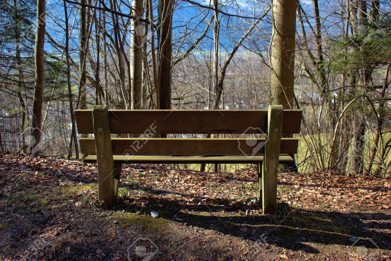 Place to relax in a forest in Vaduz in Liechtenstein 17.2.2021 - 166208101