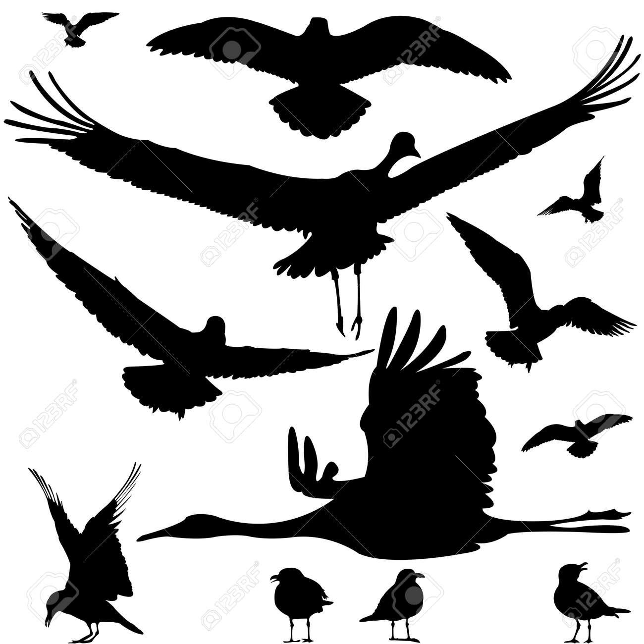 birds silhouettes isolated on white, abstract art illustration Stock Illustration - 8544726