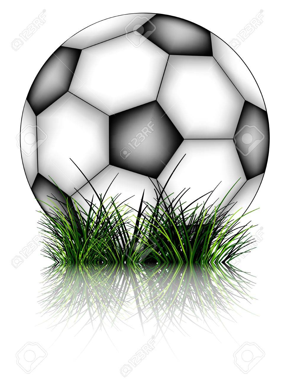 soccer ball and grass reflected against white background. Stock Vector - 10537836