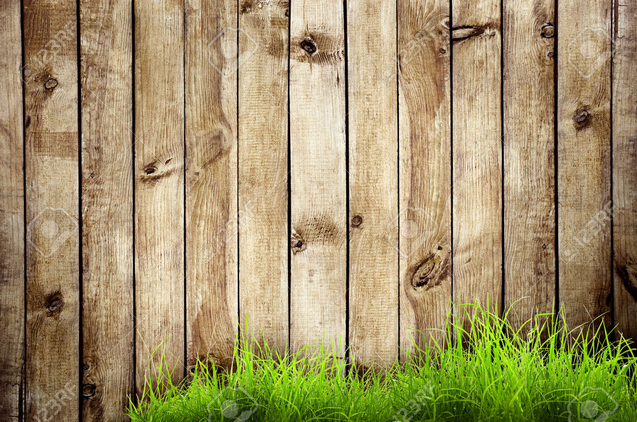 Charmant Fresh Spring Green Grass Over Wood Fence Background Stock Photo   17665599