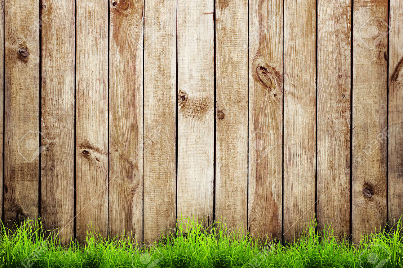 Ordinaire Spring Green Grass Over Wood Fence Background Stock Photo   36670501