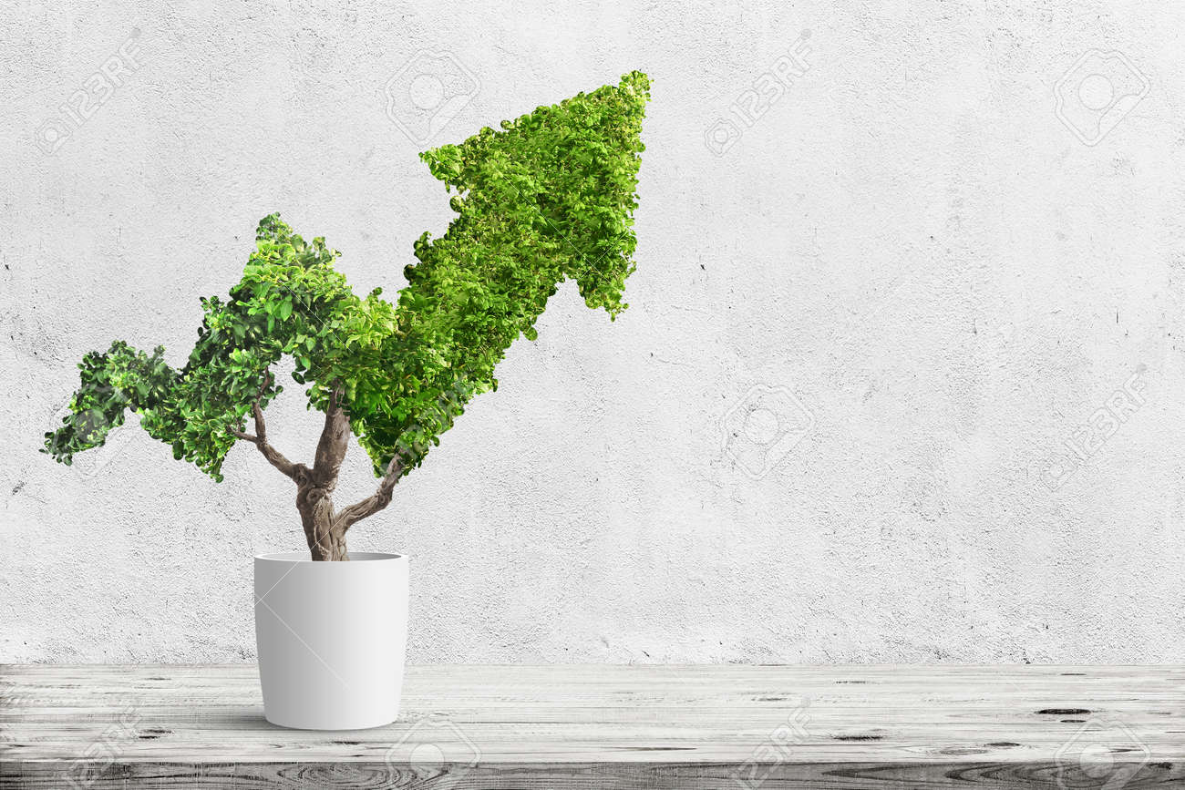 Potted green plant grows up in arrow shape over blue background. Concept business image - 96626388