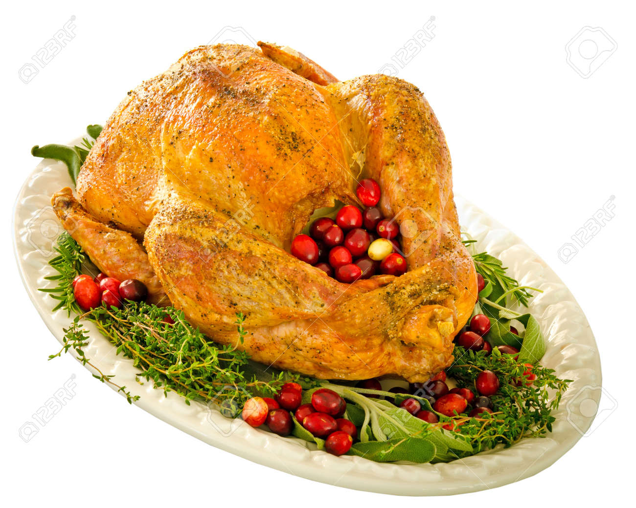 Roasted turkey stuffed with cranberries and herbs for Thanksgiving or Christmas dinner isolated on white Stock Photo - 11519062