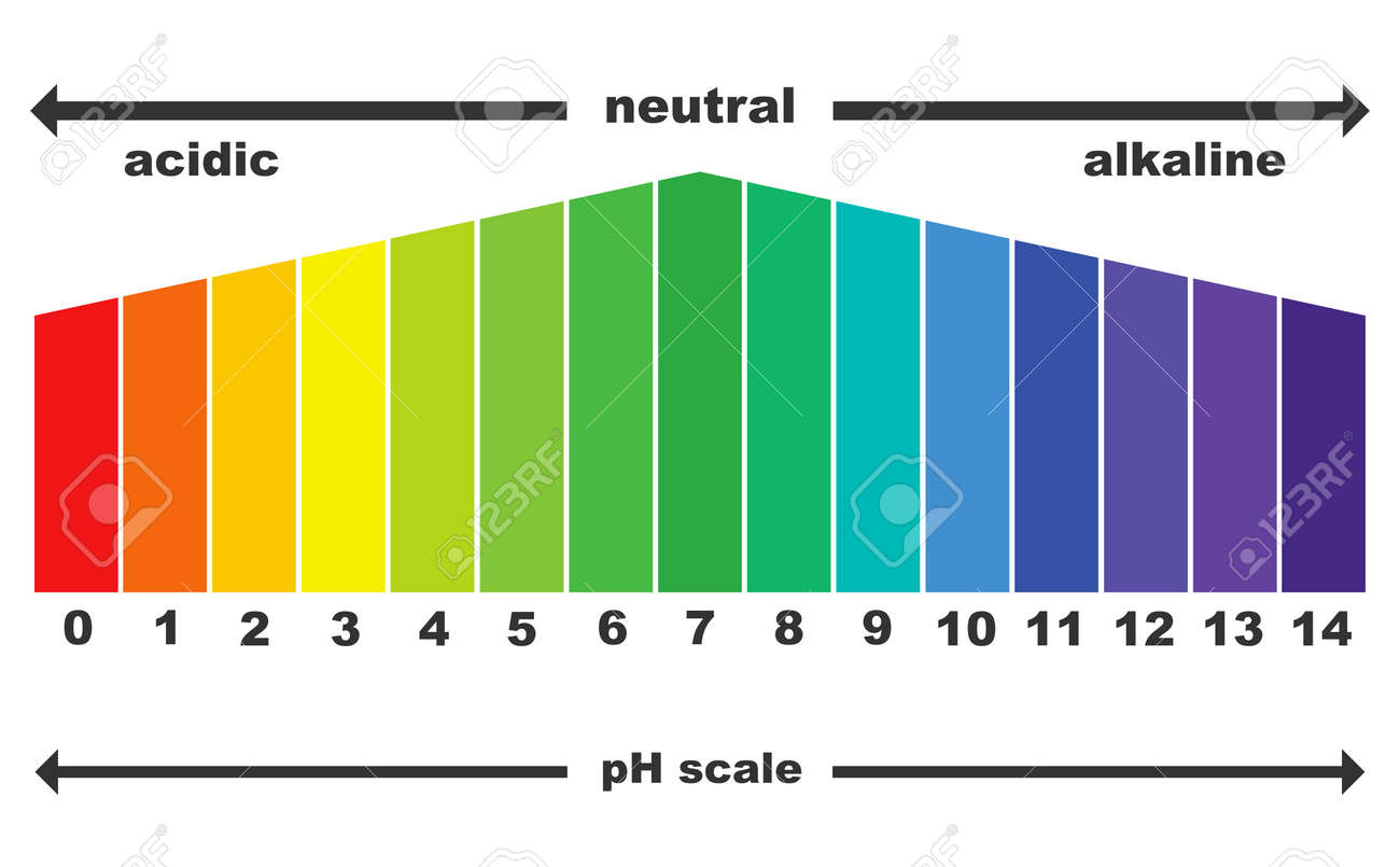 The PH Scale Universal Indicator PH Color Chart Diagram Acidic ... for Ph Scale Universal Indicator  303mzq
