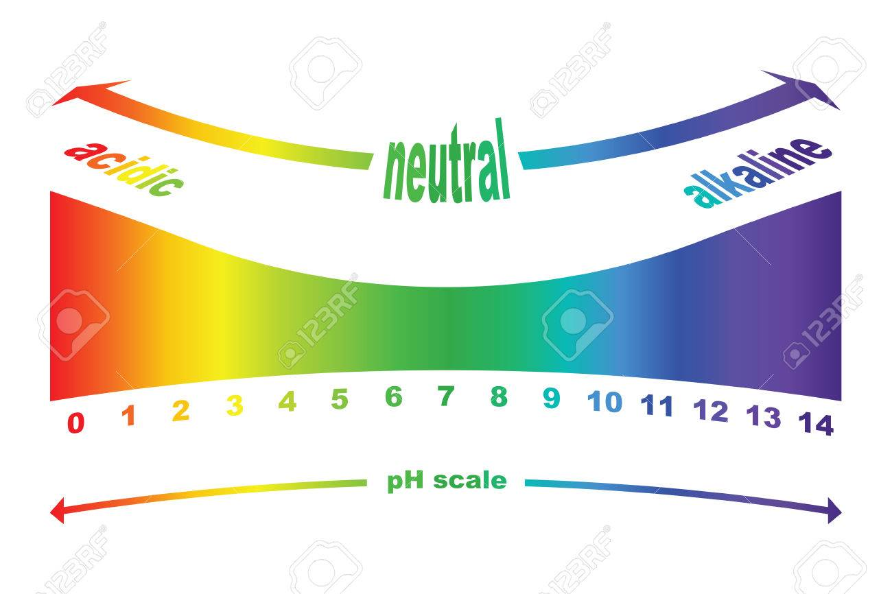 PH Scale Value, Ph Paper Test, Vector Isolated Royalty Free Cliparts ... for Litmus Paper Clipart  157uhy