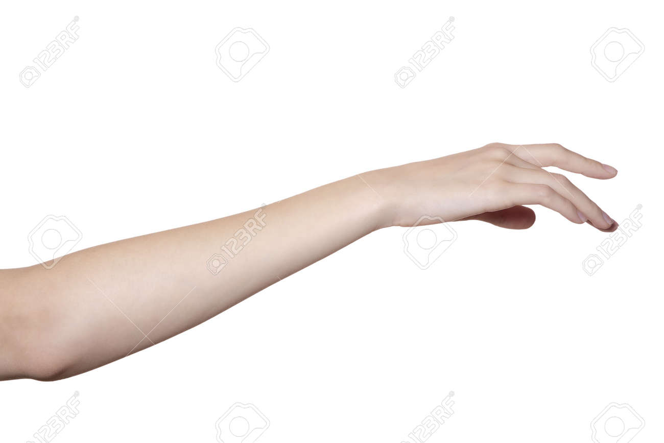 Beautiful Female Hand And Arm ...