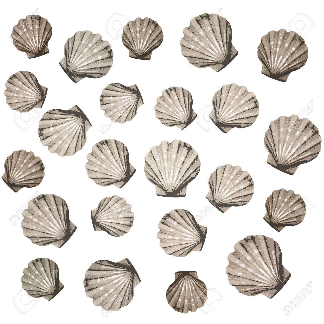 shells background Stock Vector - 10590563