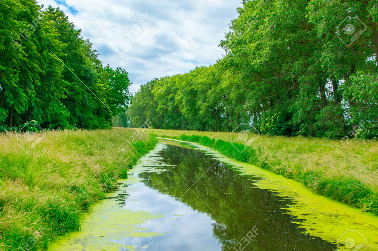 Landscape view with Herring channel near Gdansk in Poland. - 81260684