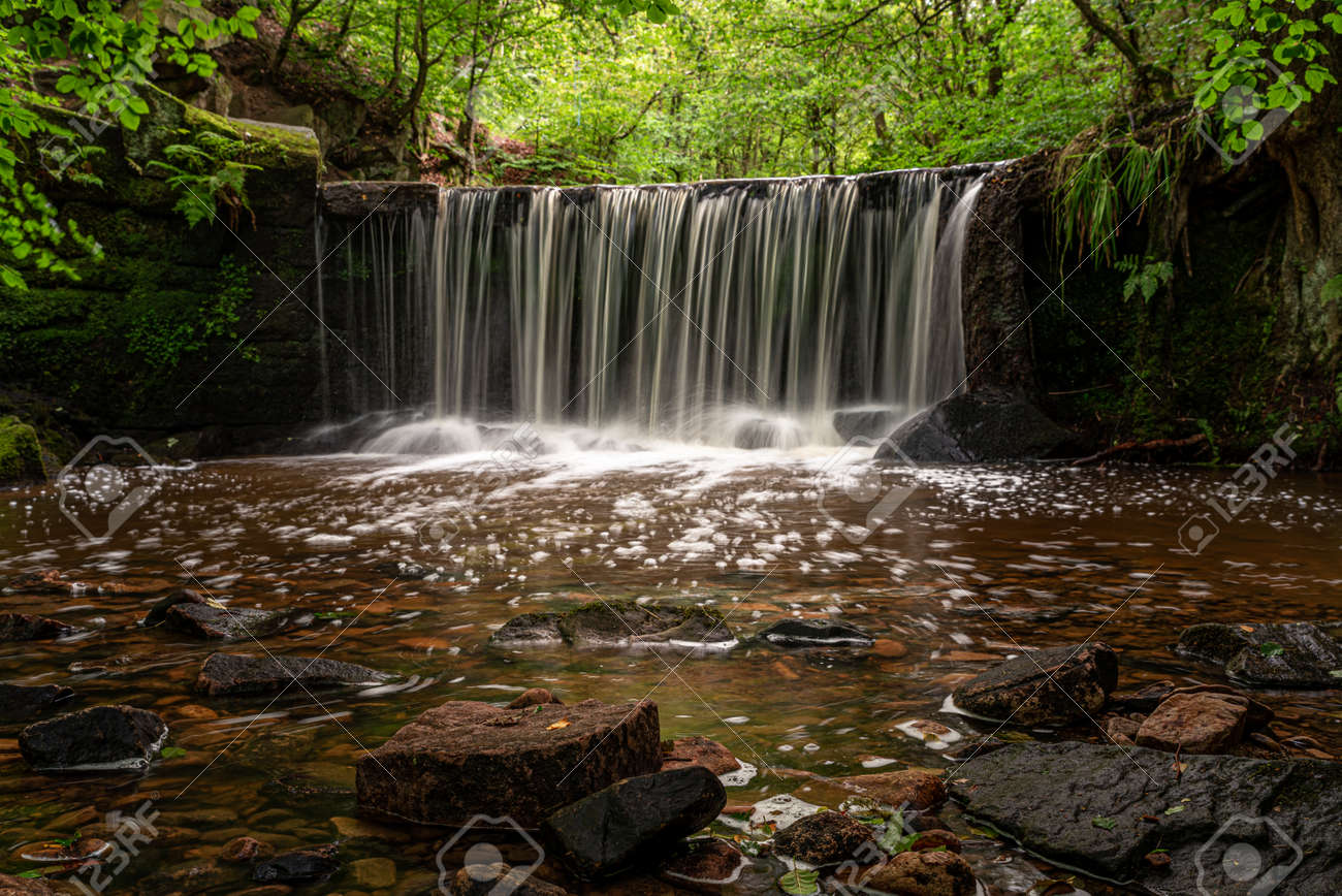 Long exposure of a small waterfall at Kynpersley Reservoir in a secluded glen. Lush vibrant emerald green trees, leaves and ferns, with moss covered rocks. - 132051472