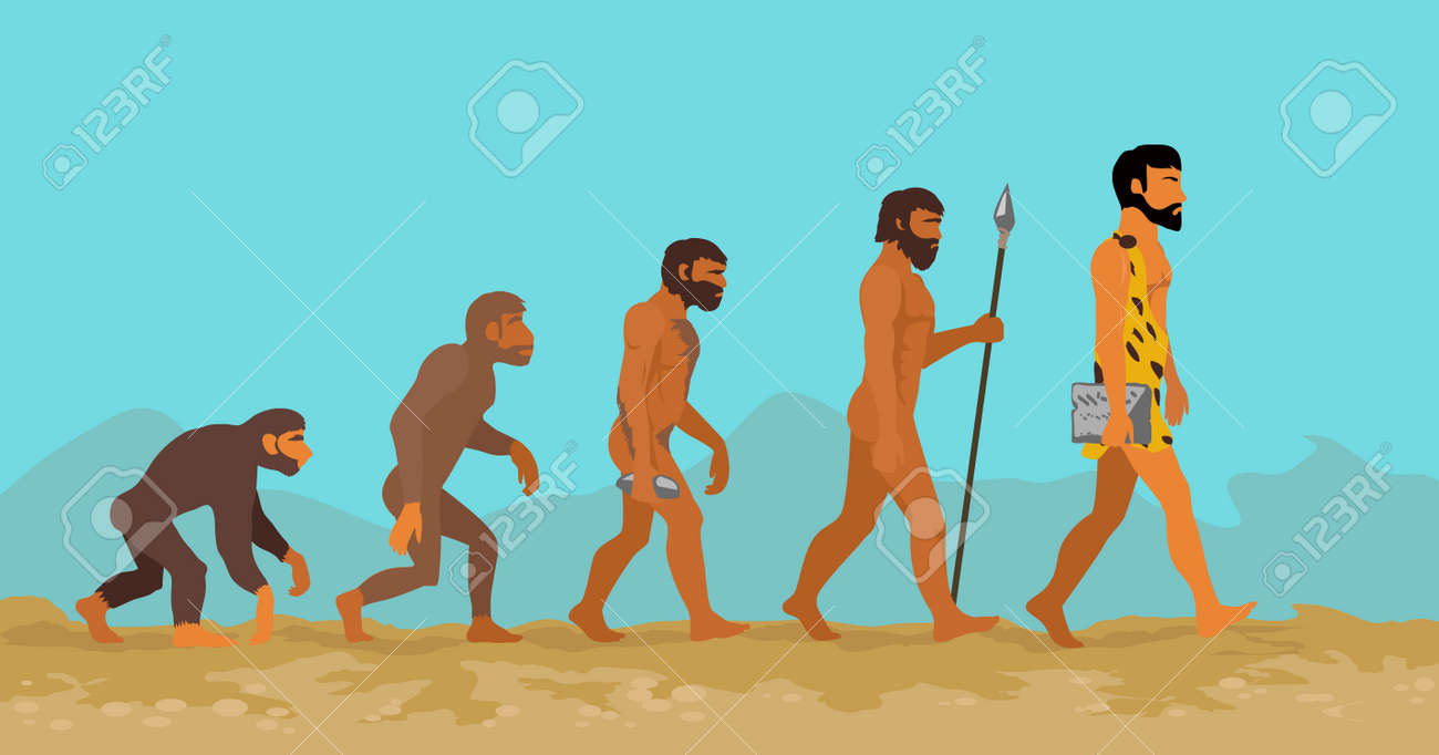 concept of human evolution from ape to man man evolution