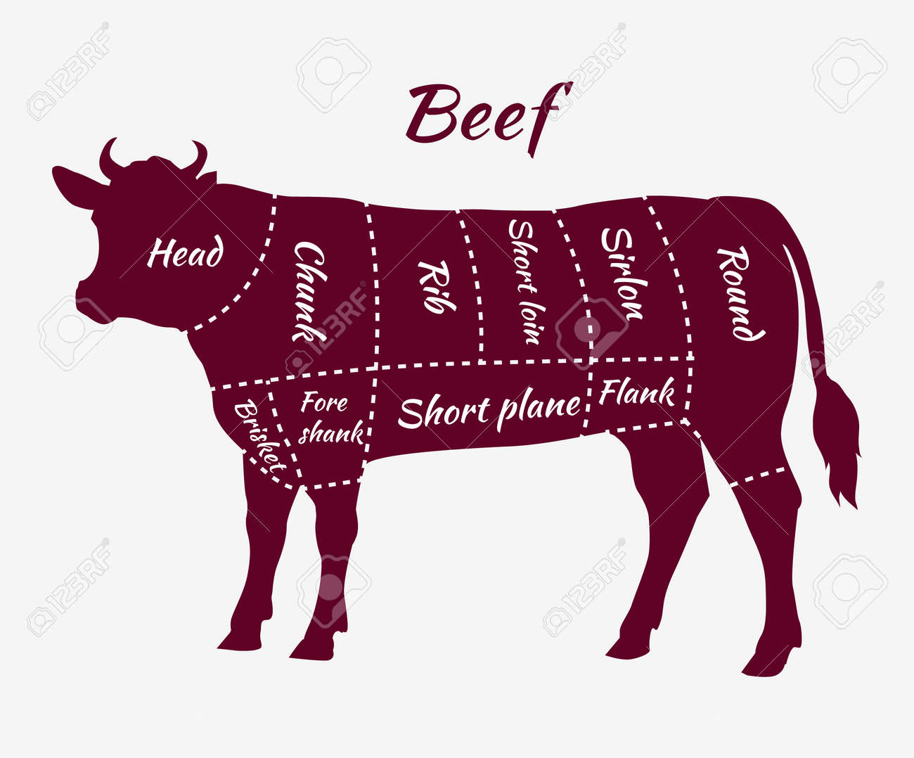 scheme of beef cuts for steak and roast  butcher cuts scheme  beef cuts  diagram in vintage style  meat cutting beef  menu template grilling steaks  and cow