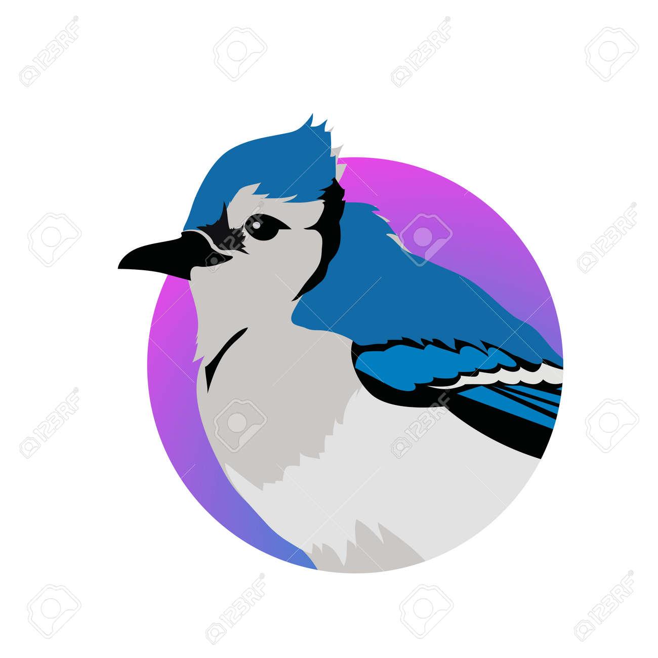 ブルー ・ ジェイ ・ ベクトル。鳥野生動物概念フラット スタイルの